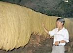 Phát hiện hệ thống hang động nguyên sơ ở Thanh Hoá